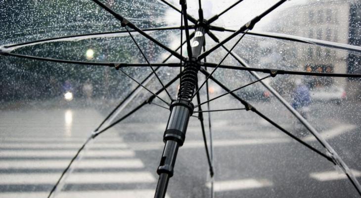 Ливень, шквал и гроза: в Коми объявлено штормовое предупреждение