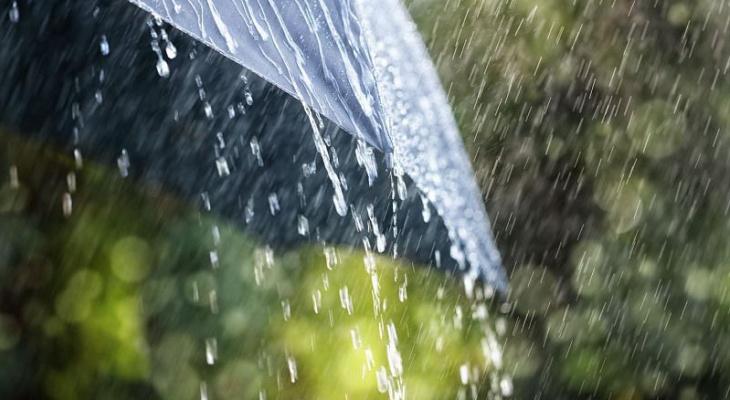 Погода в Сыктывкаре на 16 июня: жара и гроза