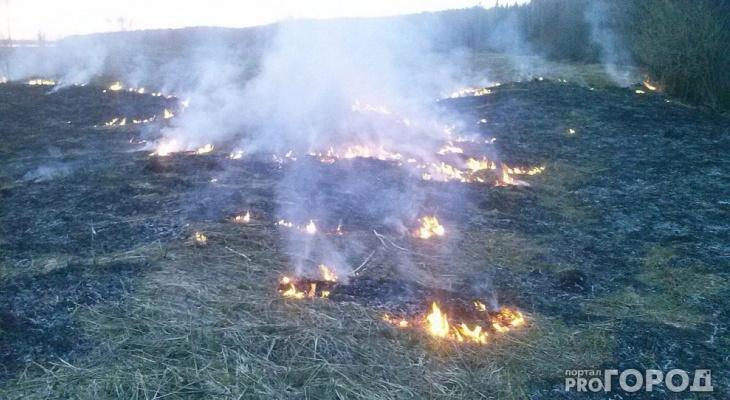 В Коми объявили чрезвычайно высокую пожароопасность