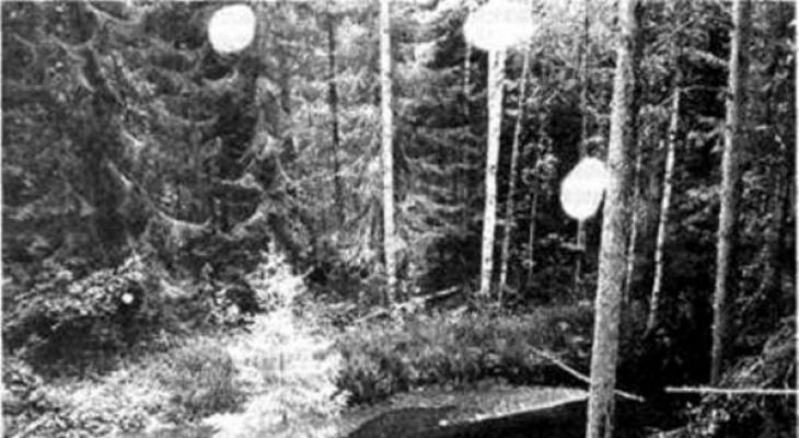 Холодная плазма, исчезновения и синее пламя из земли: аномальные зоны Коми, от которых  стынет кровь