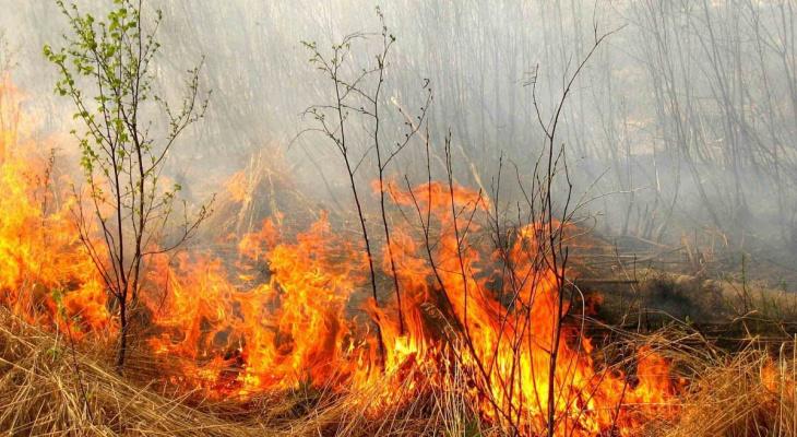 МЧС предупредило жителей Коми о высокой опасности возникновения пожаров