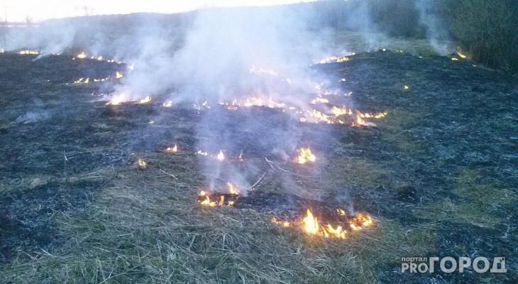 В Сыктывкаре объявили предупреждение о высочайшей пожароопасности