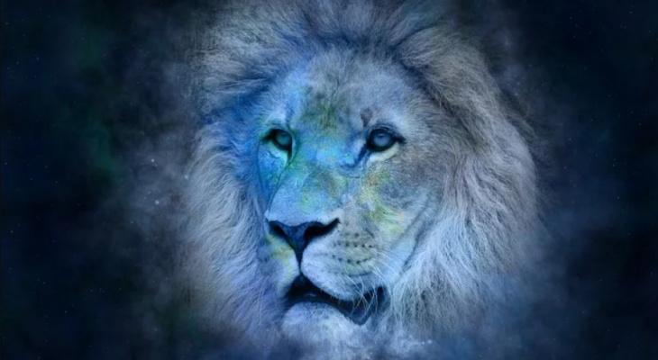 Двойственный день для Овнов и благоприятный для Львов: гороскоп на 23 июля
