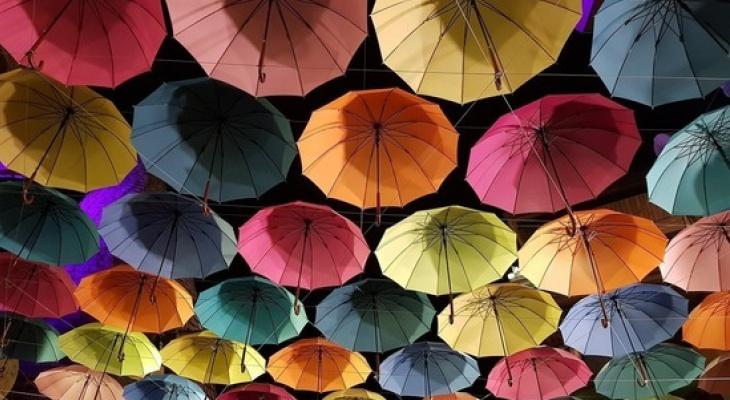 Тепло, но слегка пасмурно: прогноз погоды в Сыктывкаре на 3 августа