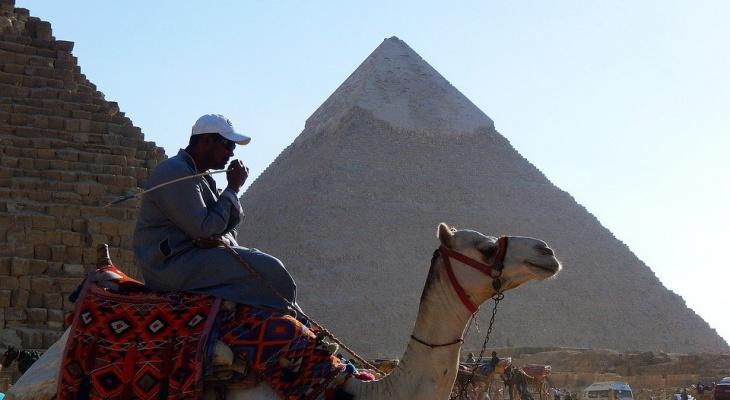 Фараон не одобряет: в Сыктывкаре за наркотики «взяли» египтянина