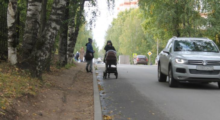 Срубить нельзя сохранить: в Сыктывкаре решается судьба деревьев на улице Кутузова